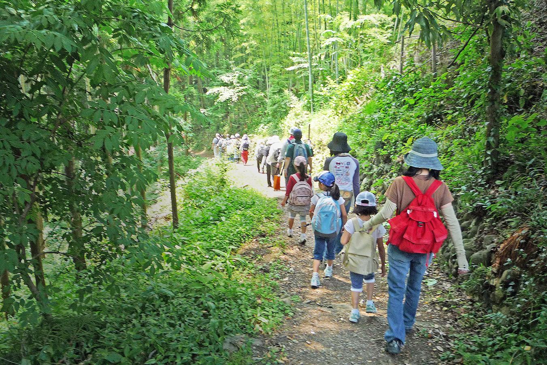 自然と環境を保全する活動
